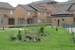 Diseño-jardines-en-zonas-comunes-Viveros-Ferca