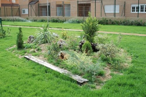 Dise o rocallas jardines viveros ferca viveros ferca - Diseno jardines online ...